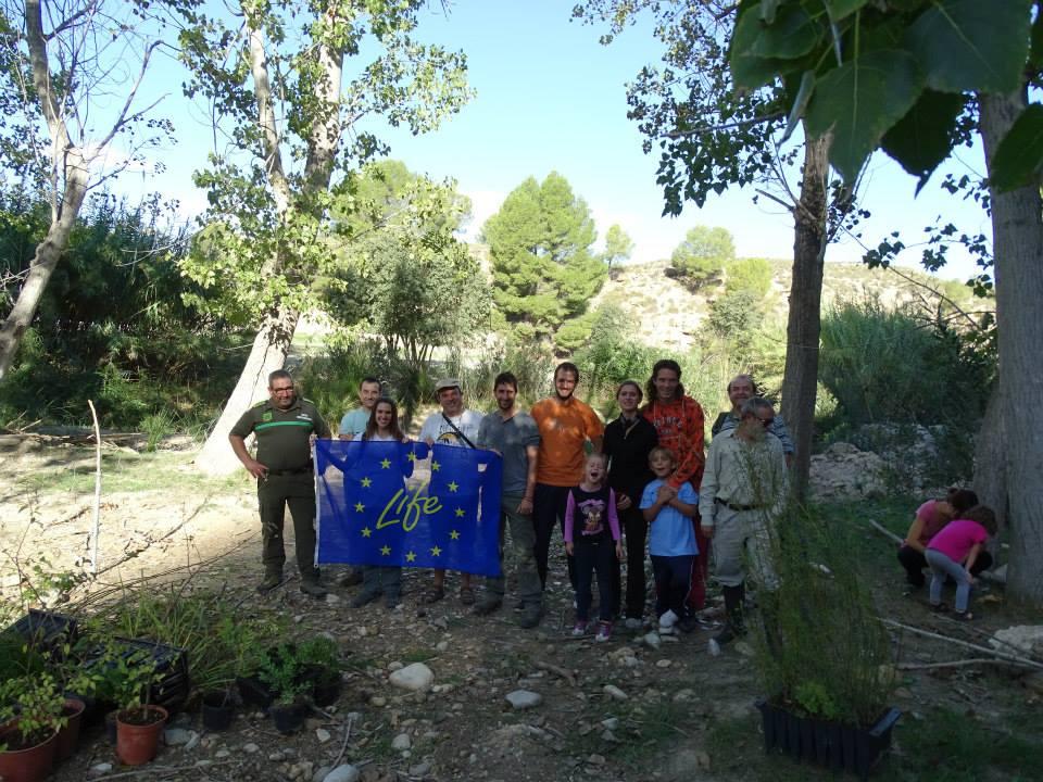 Ver la imagen en tamaño real. Los voluntarios del LIFE + SEGURA RIVERLINK continúan con la  restauración  del río Moratalla
