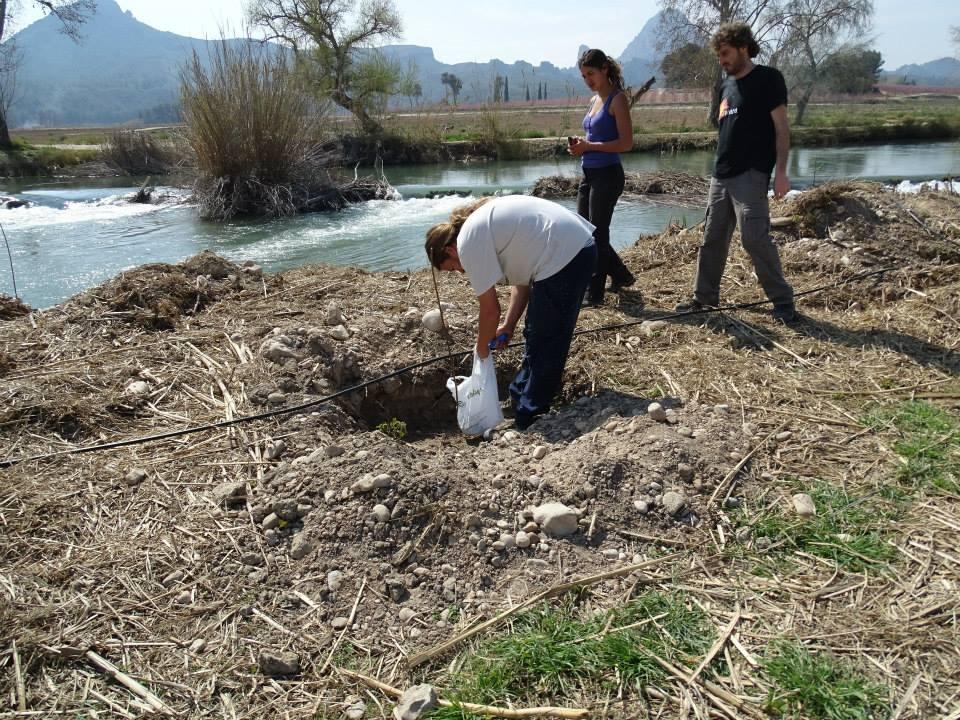 Ver la imagen en tamaño real. Los propietarios colindantes al río colaboran en su recuperación facilitando el riego de las plantaciones