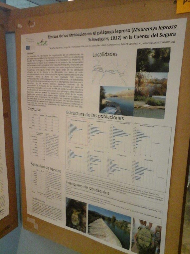 Ver la imagen en tamaño real. LIFE+SEGURARIVERLINK asiste al Congreso de Herpetología de Lleida