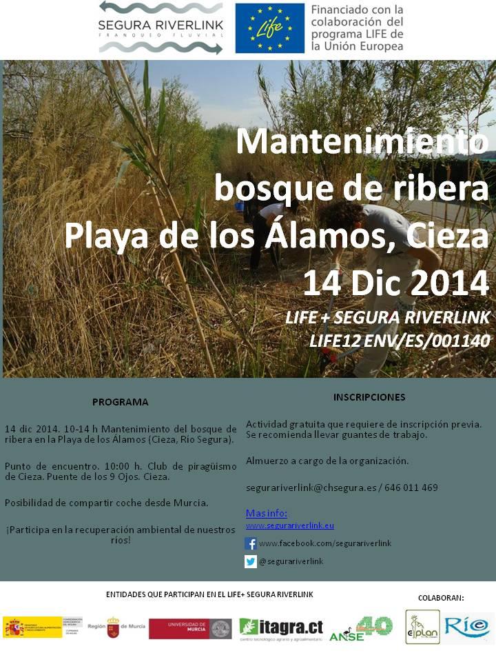 Ver la imagen en tamaño real. Mantenimiento de la restauración de la playa de los Álamos (Rio Segura)