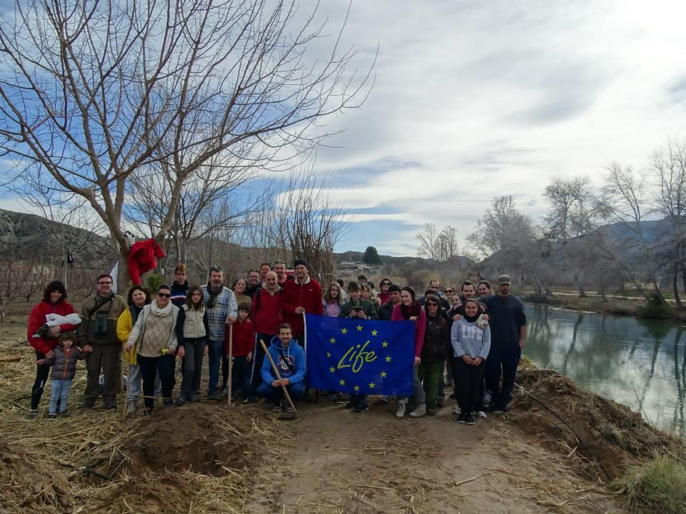 Ver la imagen en tamaño real. Voluntarios y propietarios recuperan el bosque de ribera en Los Charcos, Cieza