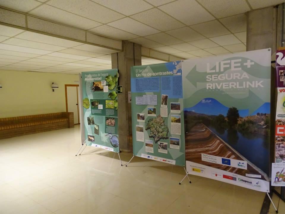 Ver la imagen en tamaño real. Exposición del LIFE+SEGURA RIVERLINK en Facultad de Veterinaria
