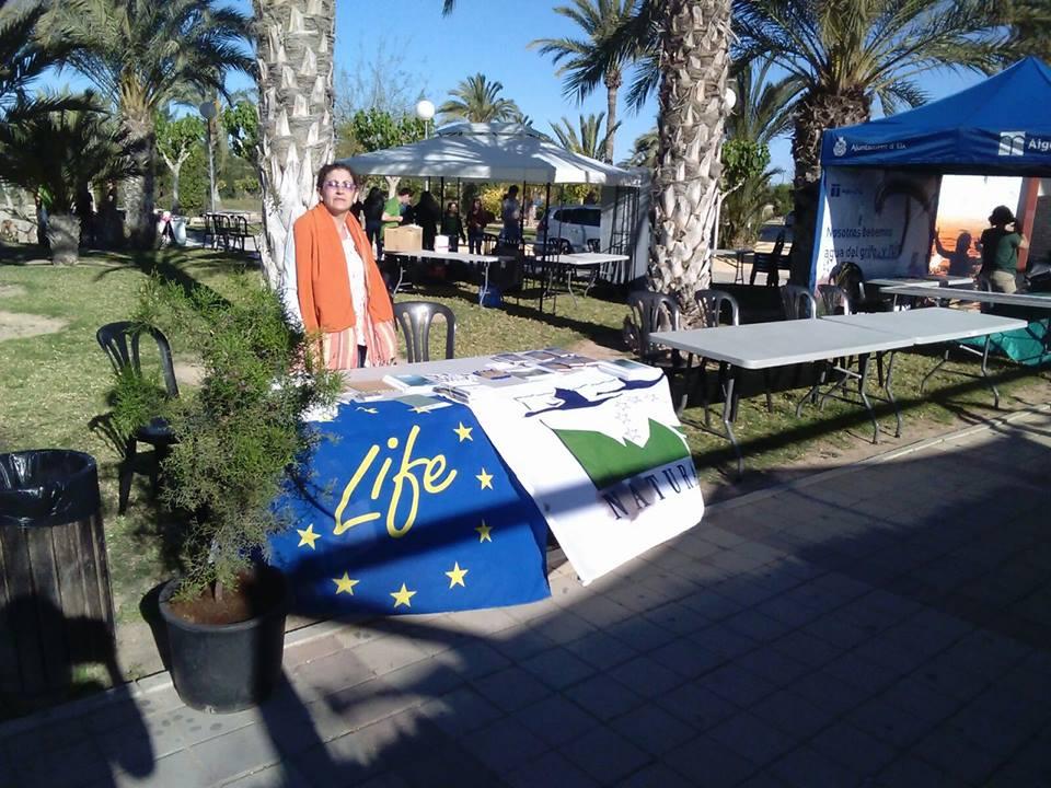 Ver la imagen en tamaño real. SEGURARIVERLINK participa junto con otros proyectos LIFE en la feria de la sostenibilidad de la UMH