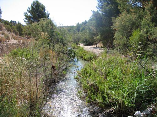 Río Luchena. Lorca (Murcia).